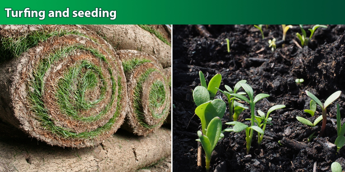 Turfing-seeding